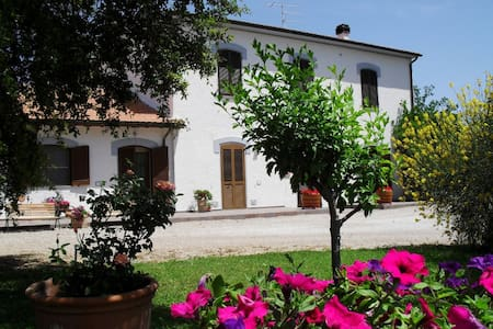 Appartment in  a green park - Grosseto