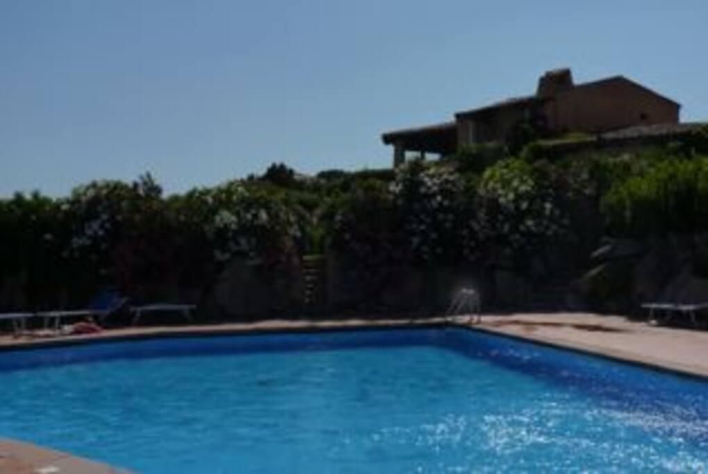 la piscina - the pool
