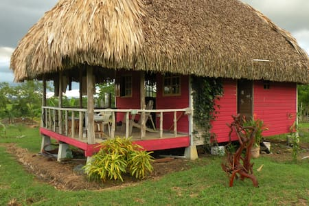 Thatched-roof Paradise Cabin
