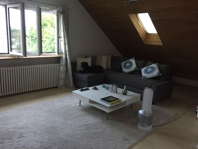Cosy attic apartment near Zurich