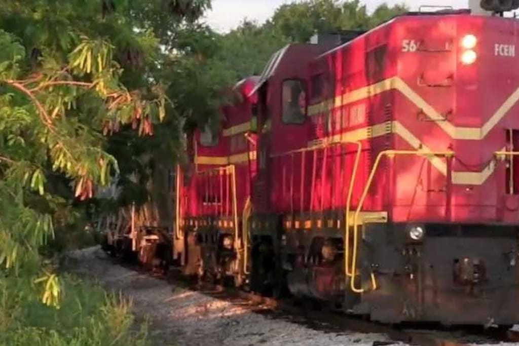 The Florida Central Railroad runs behind the house. Run to be sure to catch it. There is a motion sensor light that shines on the train at night when it passes by and can be seen from the living room windows.