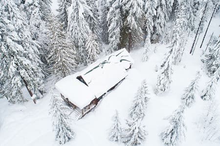 Cross country ski to the modern dog-friendly Marshall Cabin, woodstove