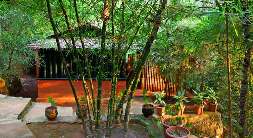 Eco friendly Cottages Near  Waterfall - Meppadi