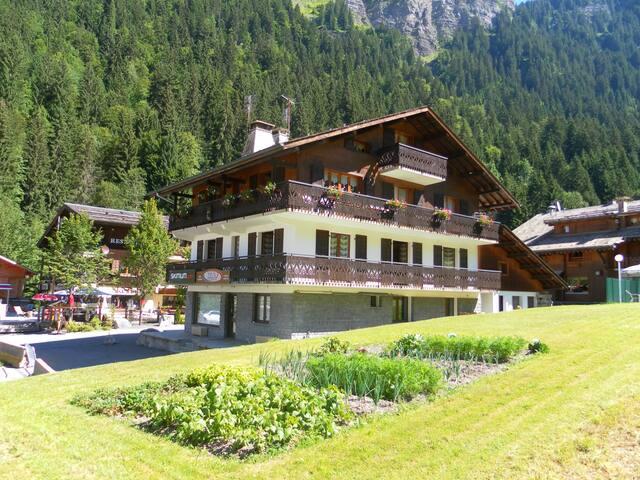 appartement Morzine-domaine skiable Avoriaz-3 pers