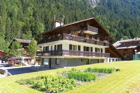 appartement Morzine-domaine skiable Avoriaz-3 pers