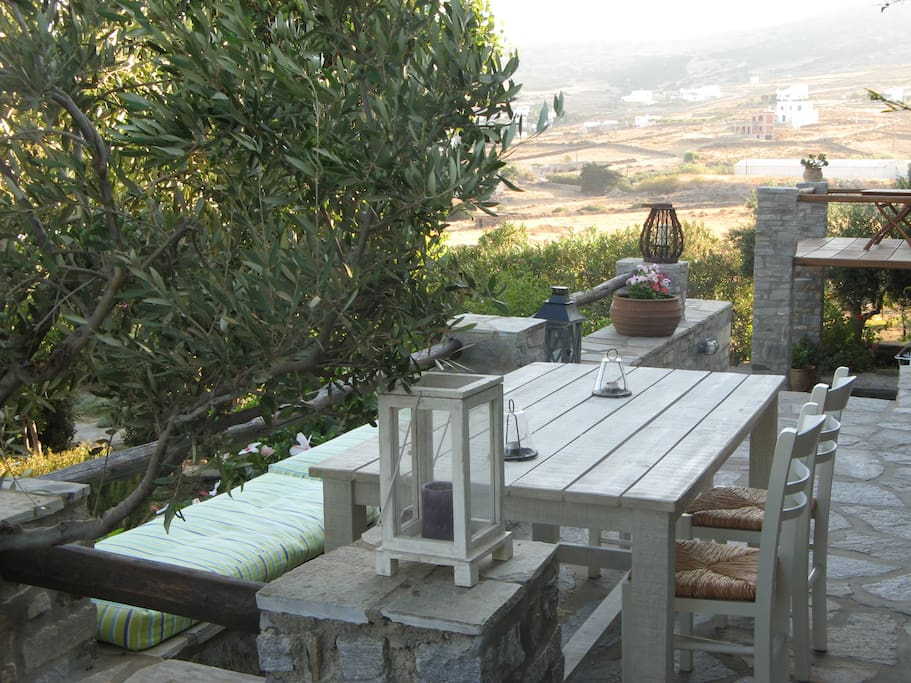 The house is surrounded by olive-trees