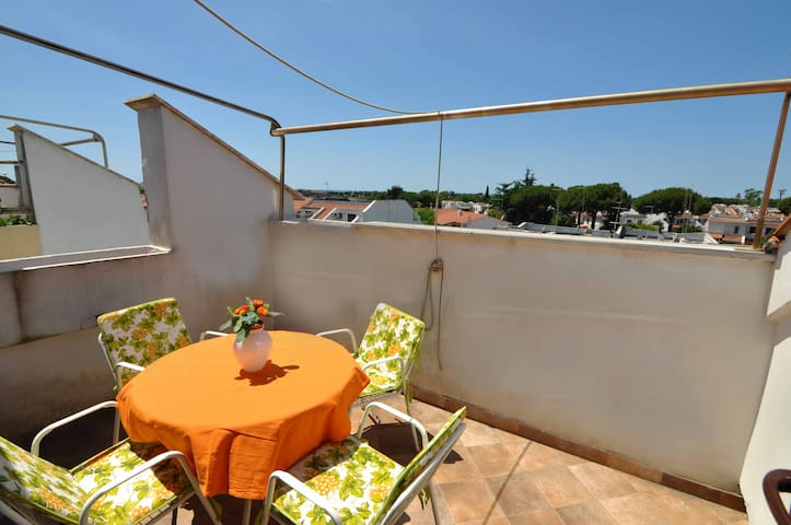 Nice flat on seaside, close to Rome - Marina - Appartement