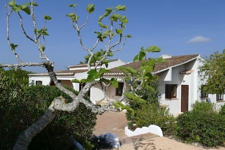 Quinta en algarve - Faro District - Haus
