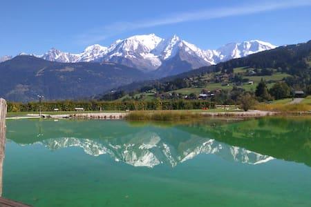 1 chbre + 1 salon de charme vue Mt Blanc - Chalet