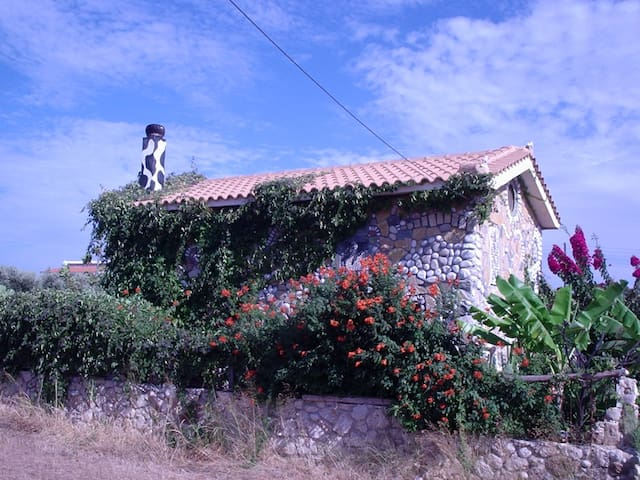 unique art house Fterionas in Skala - Skala - บ้าน