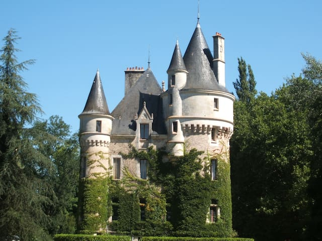 Chateau de la Chaise - Mosnay - Bed & Breakfast