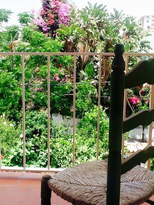 Vista a los jardines desde el balcón del comedor.