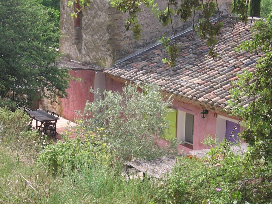le provencal