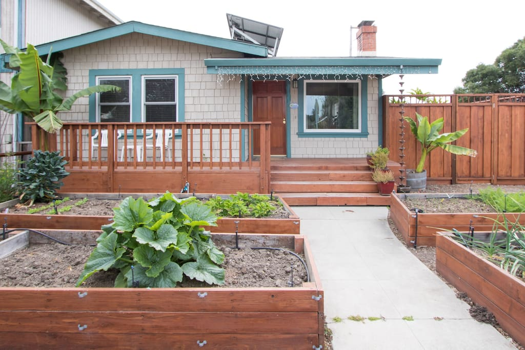 Front yard garden and brand new fence