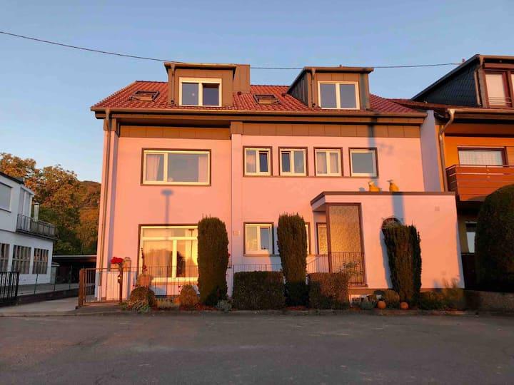 IHOE Premium - only 1km from Heidelberg