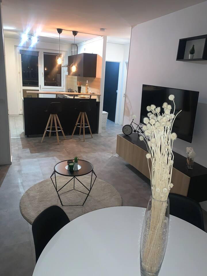 Appartement design Créteil 50m2