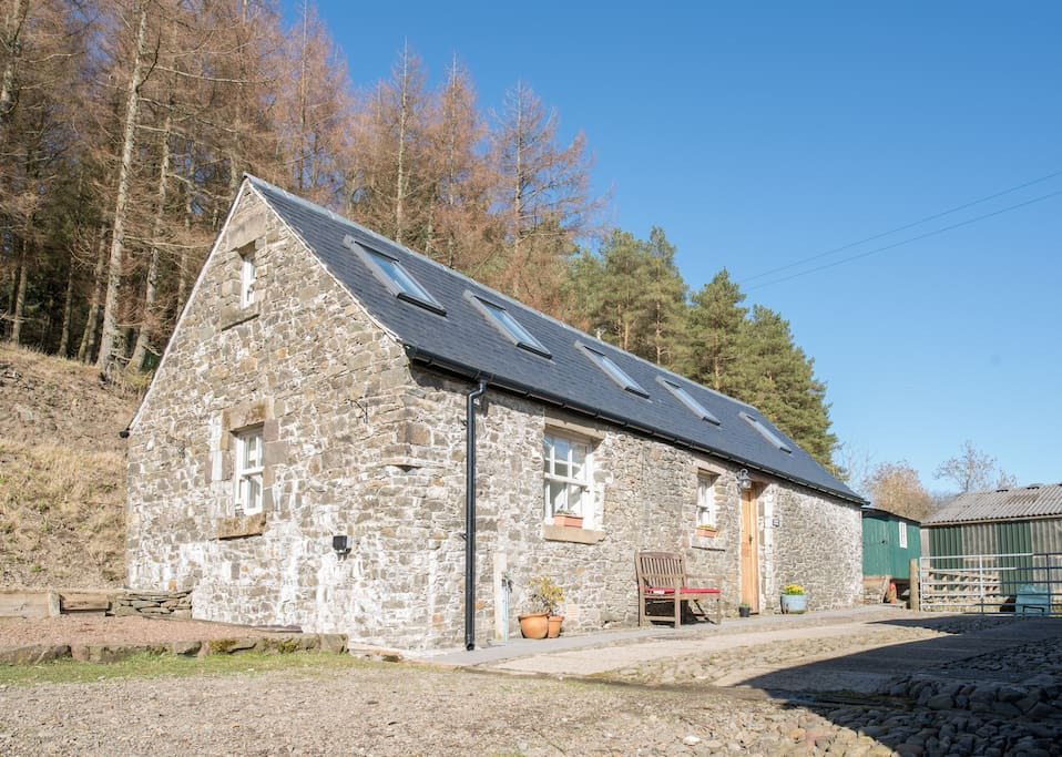 Curlew Cottage, Meadshaw Forest at rear