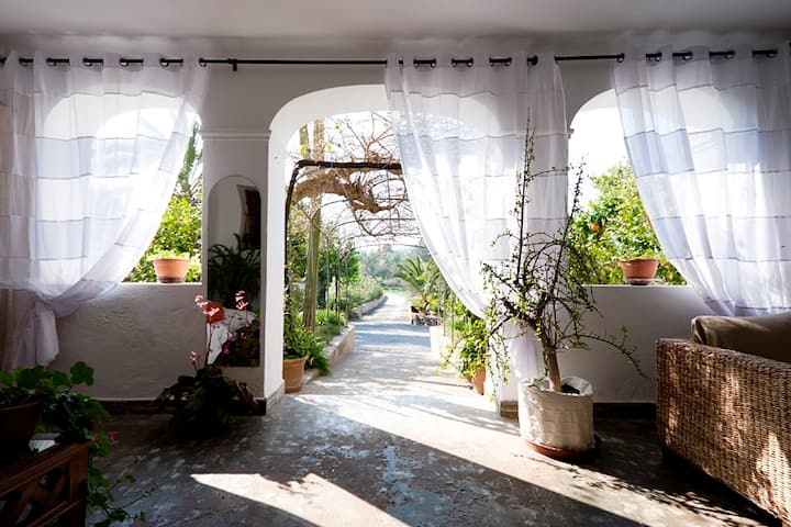 Rooms in the peaceful Ibiza (Baix)