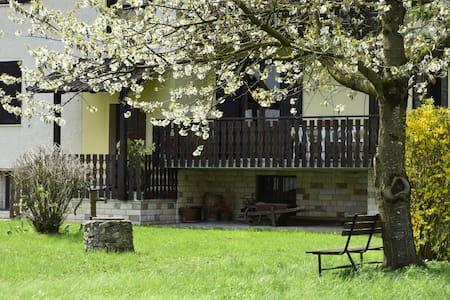 Casa Lucia - Pieve di Ledro - Wohnung