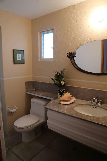 baño de visitas (tiene regadera)
