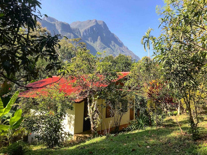 Private Forest Bungalow, temples, cafes, caves