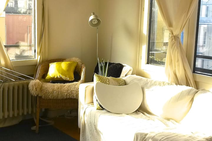 Beautiful apartment central of geneva - Geneve - Huoneisto