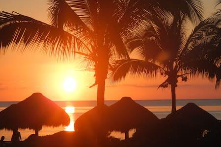 Kier Kondo--Relax in the quiet beauty of Cozumel