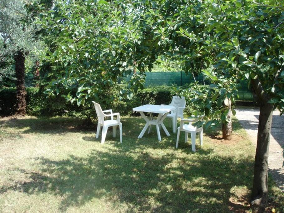 Un po' d'ombra: bel posto da metterci un tavolo
