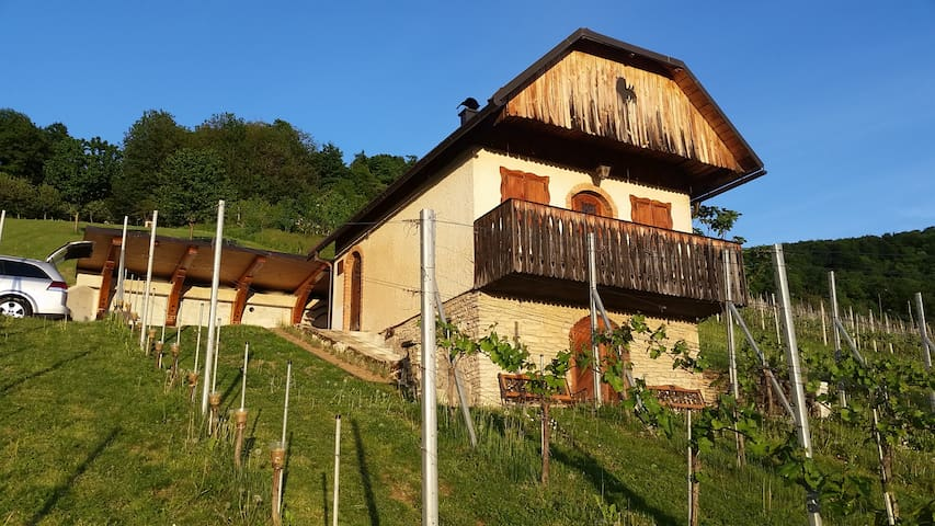 Vineyard cottage Rangus Romantik - Šentjernej - 獨棟