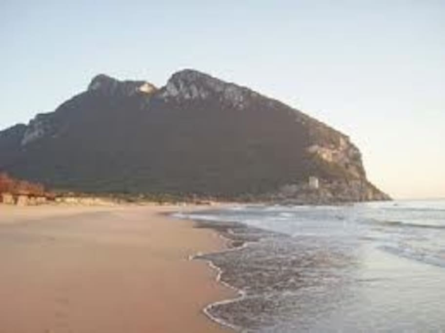 Sabaudia beach, National Park of Circeo