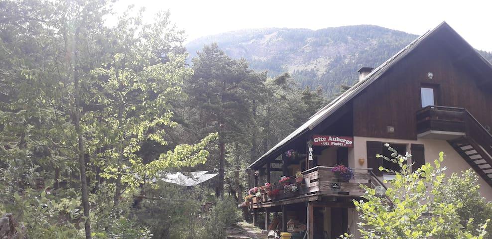 Chambre dans gîte-auberge, au milieu d'une forêt