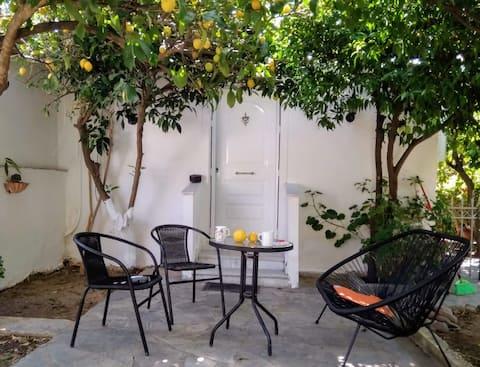 Seaside Studio/Seaside House with garden