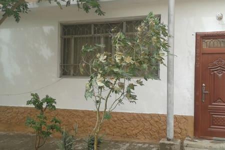 DAR AL DHYAFA AL NAJAFI - House