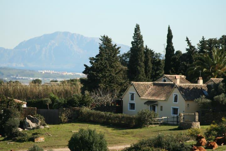 Casa Amarilla a charming country house swimingpool - Tarifa - House