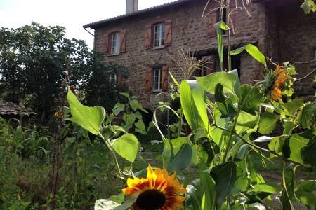 Maison en pierre en Ardèche Verte - Saint-Romain-d'Ay