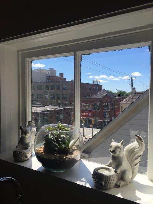 The kitchen window looks onto Spring Garden Road.