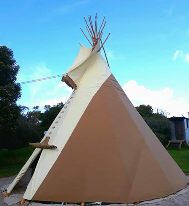 Tipi Stay on Permaculture Farm