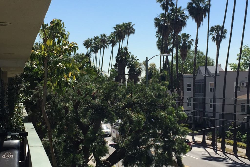 Balcony view that overlooks Hollywood Blvd.