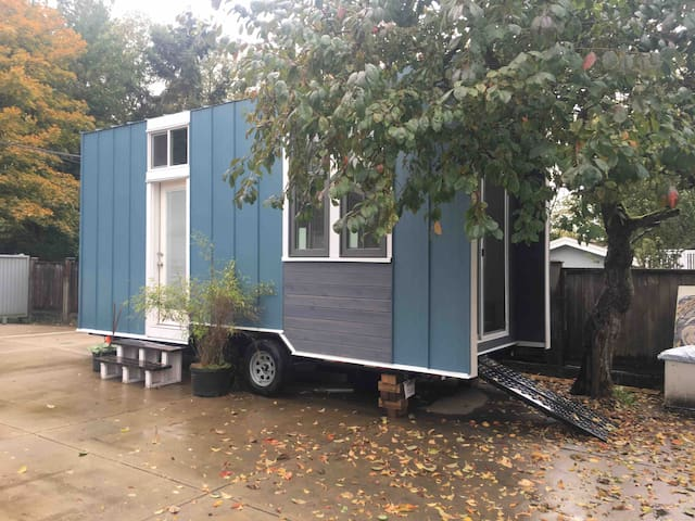 Vancouver Area Blue  Tiny House