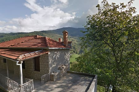 Metsovo Great View Calm Into Nature Complete House - Metsovo - Rumah