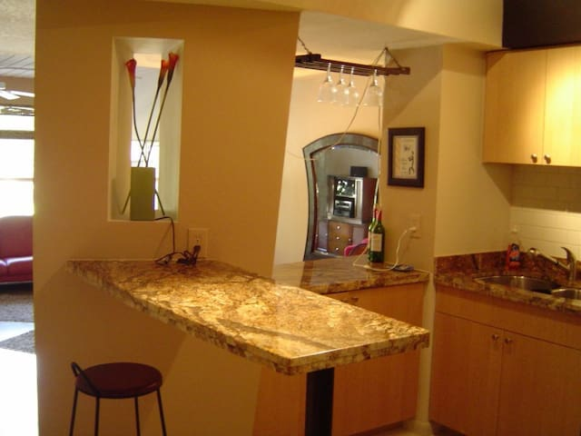 Tampa Condo , walk to everything! Great location!