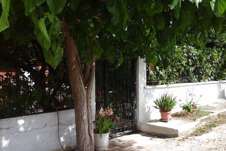 Ησυχο δωματιο κοντα λιμανι ραφηνας - σπατα - Rumah