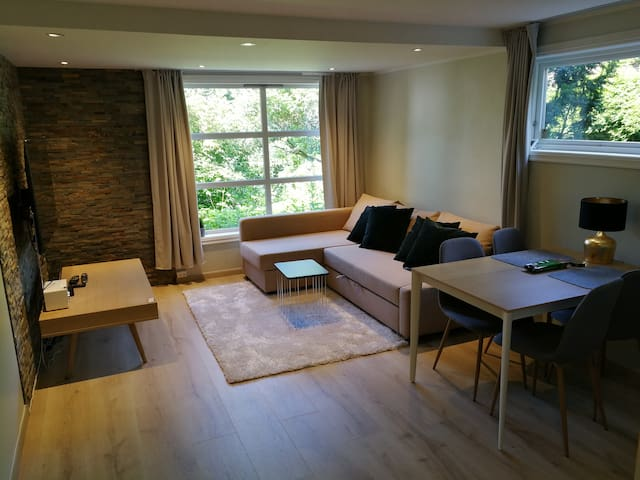 Modern, clean apartment 20 minutes from Oslo