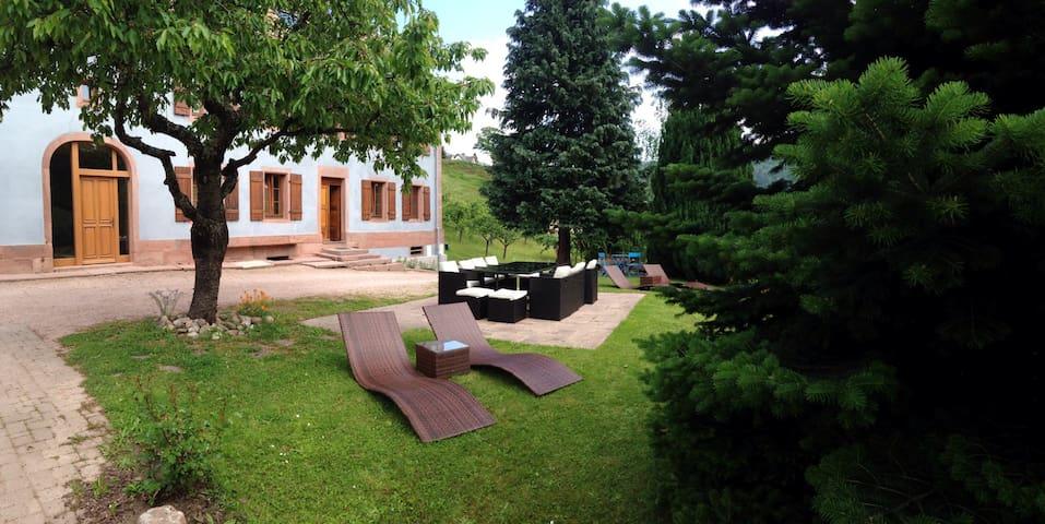 """Gîte""""Le vieux' ruisseau""""sauna wifi - Lapoutroie - Appartement"""
