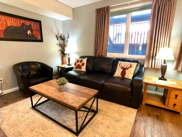 Living area, TV and cable. Sofa bed for two