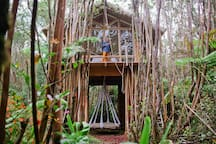 Dreamy Tropical Tree House