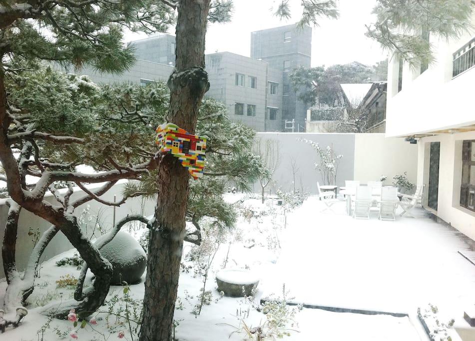 Gallery garden