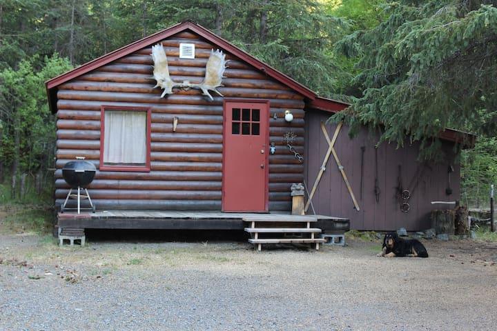 Kenai Lake Cabin #2 - Cooper Landing
