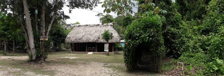 Centro ecoturístico Ya'ax Pepen Cabaña 1