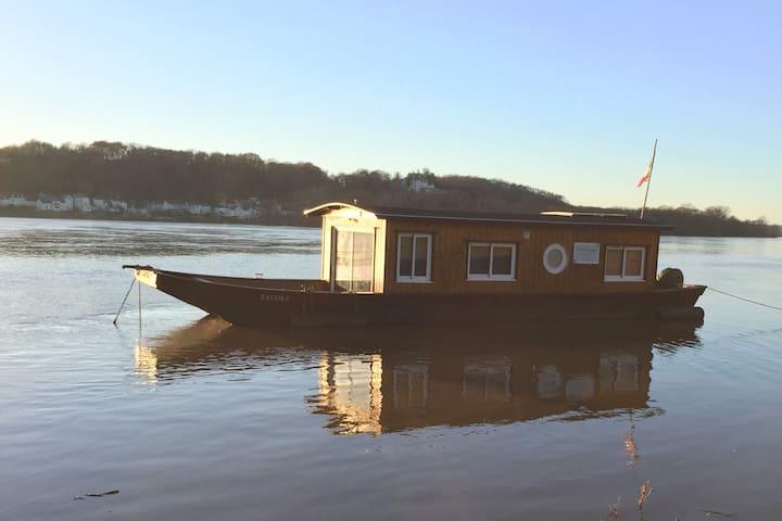 Toue cabanée sur la Loire
